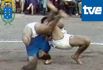 Videos - Luchada en la Plaza de Toros